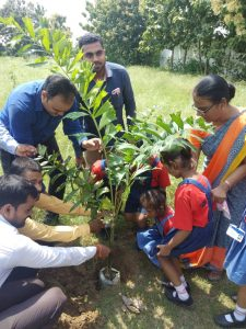 Tree Plantation on Sep 14, 2018